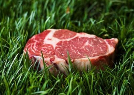 Βιολογικό Κρέας
